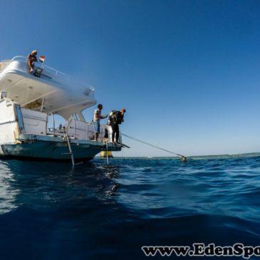 6.06.2016 – Rozpoczęcie podstawowego kursu nurkowania OWD PADI