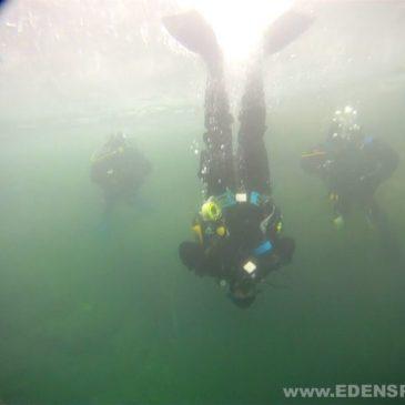 25 luty 2012 – Filmik z nurkowania podlodowego