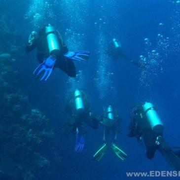14.11.2011 – Rozpoczęcie podstawowego kursu nurkowania OWD PADI