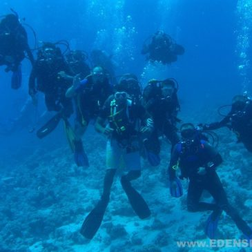 28.09.2011 – Kurs nurkowania OWD PADI – Rozpoczęcie