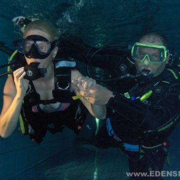 17.08.2011  – Nurkowanie AQUA Bielsko, interaktywne pokazy nurkowania.