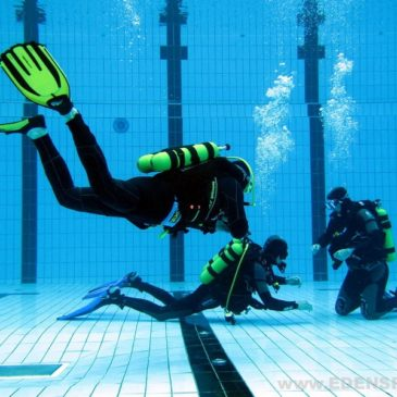 28.07.2011 – Kurs podstawowy nurkowania OWD PADI – 2