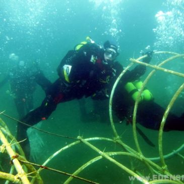 24.05.2011 – Kurs nurkowania AOWD PADI
