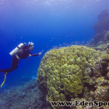 30.10.2014 – Rozpoczęcie podstawowego kursu nurkowania P-1 CMAS