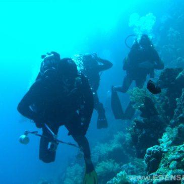 27.04.2011 – godzina 17.00 Rozpoczęcie podstawowego kursu nurkowania  PADI Open Water Diver