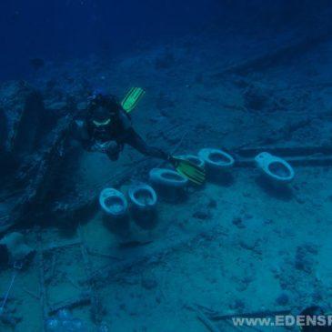 Płetwonurek Eksplorator PE CMAS – rozpoczęcie kursu