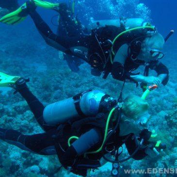 29.07.2011 – Rozpoczęcie kursu nurkowania PADI AOWD