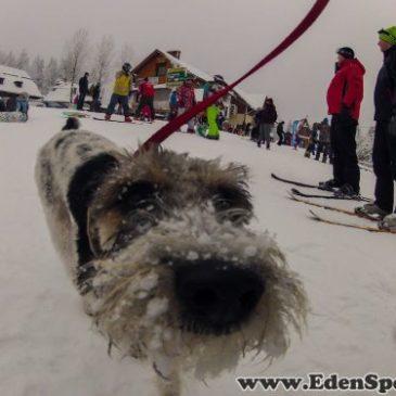 29.11.2015 – Rozpoczęcie sezonu zimowego z EdenSport