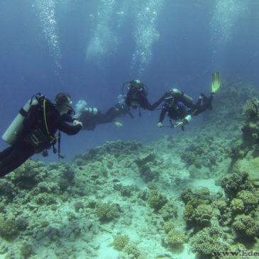 4.08.2017 – Podstawowy kurs nurkowania OWD PADI