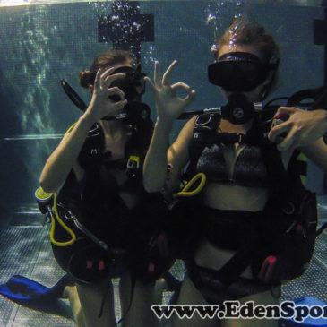 6.10.2014 – Pokazy nurkowania na basenie AQUA