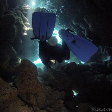 Marsa Alam – dzień piąty – nurkowanie w El Quseir