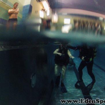 8.12.2014 – Pokazy nurkowania na basenie AQUA