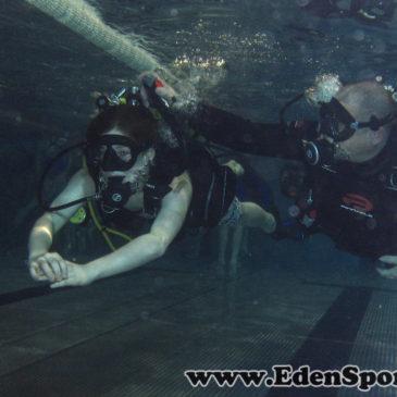 13.02.2014 – Pokazy nurkowania na basenie AQUA w Bielsku