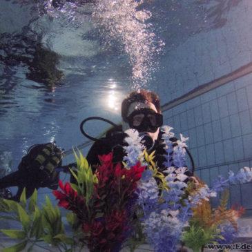 10.11.2017 –  Nurkowanie na rafie koralowej w Goczałkowicach