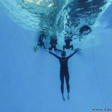 17.12.2017 – Freediving w tubie dla płetwonurków