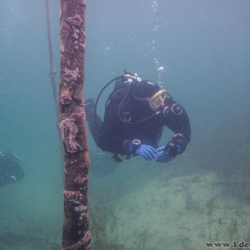 12.02.2018 –  Kurs nurkowania w suchym skafandrze PSS CMAS
