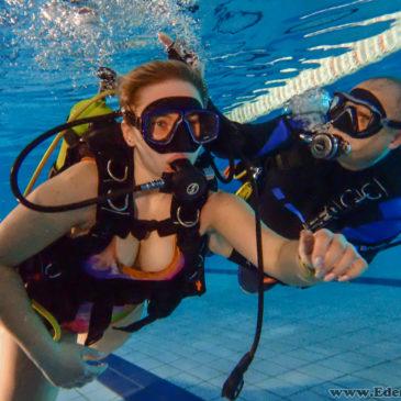 7.03.2018 – Darmowe pokazy nurkowania na basenie AQUA Bielsko-Biała