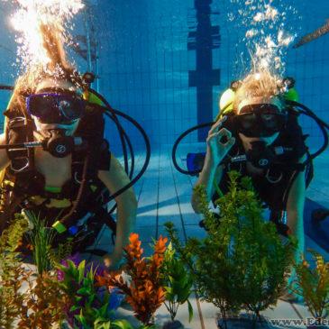 5.03.2018 – Darmowe pokazy nurkowania na basenie MOSIR w Czechowicach-Dziedzicach