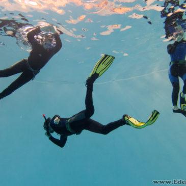 22.03.2018 – Kurs Freedivingu dla początkujących
