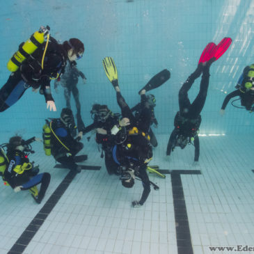 1.06.2018 – Ratownictwo na basenie z kursem OWD