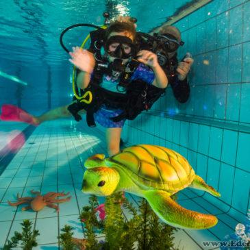 20.07.2018 – Zdjęcia z pokazów nurkowania w Goczałkowicach