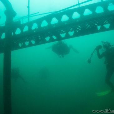 10.08.2018 – Klubowe nurkowanie na Koparkach