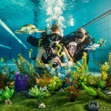 9.01.2019 – Nurkowanie Bielsko – Darmowe pokazy nurkowana na basenie AQUA