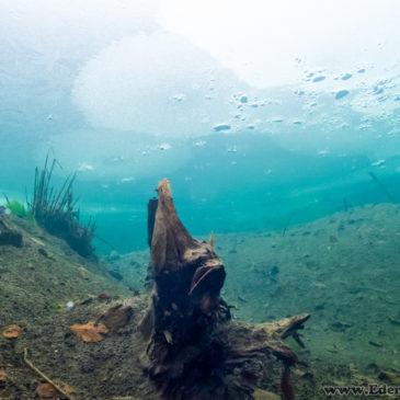 20.11.2018 – Pierwsze nurkowanie podlodowe w tym sezonie