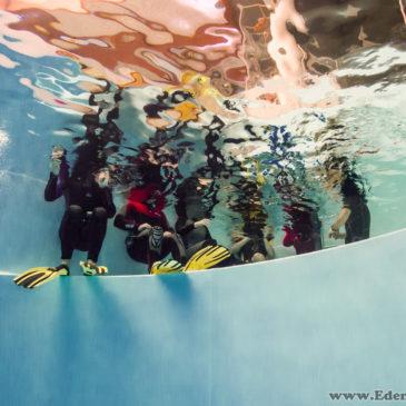 "16.12.2018 – Freediving w 7 metrowej tubie ""Aqadrom"" Ruda Śląska"