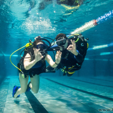 9.01.2019 – Zdjęcia z pokazów nurkowania na basenie AQUA Bielsko