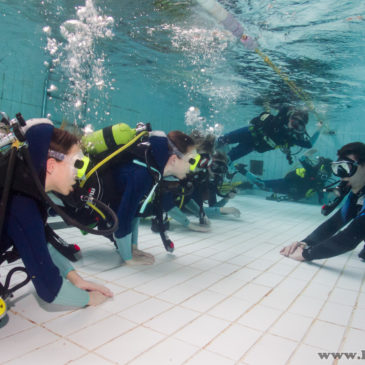 20 maja 18:00 – Kurs nurkowania Junior OWD od 10 do 15 roku życia