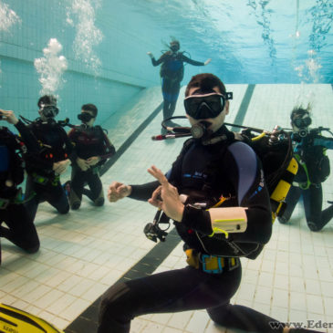 26.04.2019 – Szkolenie basenowe kursu podstawowego i zabawa!