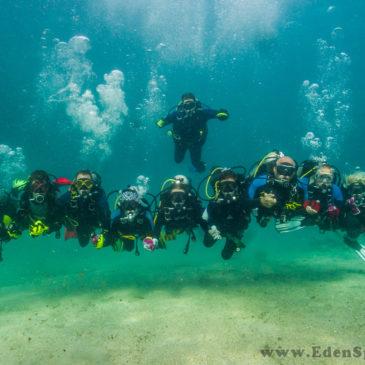 27.08.2019 – Rozpocznij szkolenie wprowadzające w podwodny świat – Podstawowy kurs nurkowania OWD
