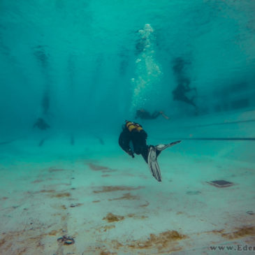 24.08.2019 – Basen kursu OWD + klubowy trening nurkowania