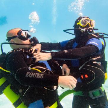 31.08.2019 – Ratownictwo basenowe kursu podstawowego
