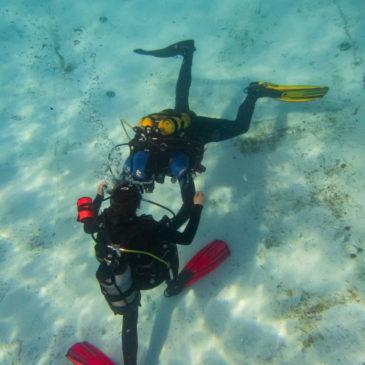 13.09.2019 – Rescue Diver – Płetwonurek ratownik – kurs dla każdego!