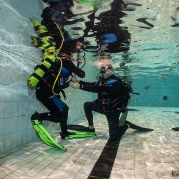 20.12.2019 – Basen klubowy i trening nurkowania