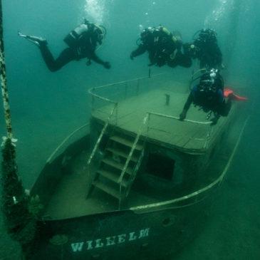 22.02.2020 – Klubowe nurkowanie na Koparkach