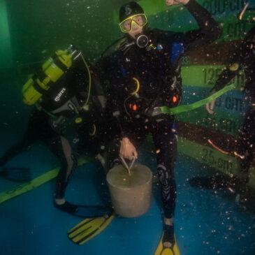 28.09.2020 – Zajęcia kursu na zbiornikach nurkowych