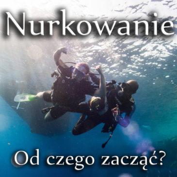 Zostań płetwonurkiem i rozpocznij swoją podwodną przygodę!