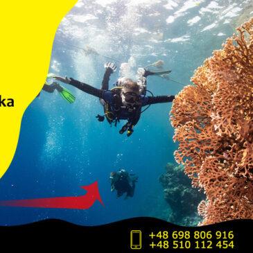 Zostań płetwonurkiem w Bielsku-Białej i zwiedzaj podwodny świat razem z nami!